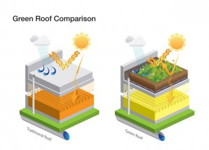 7-green-roof-comparison-v2[1]