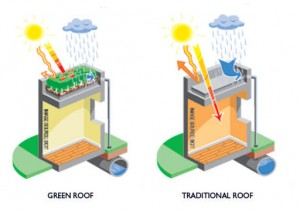 roof_types[1]