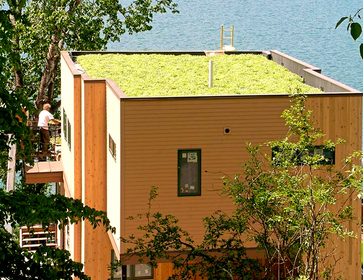 Green Roof in Whitefish, MT
