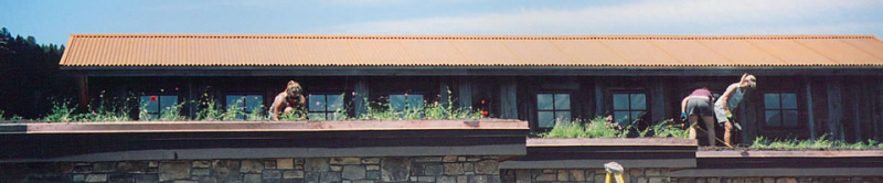 Philipsburg Wildflower roof