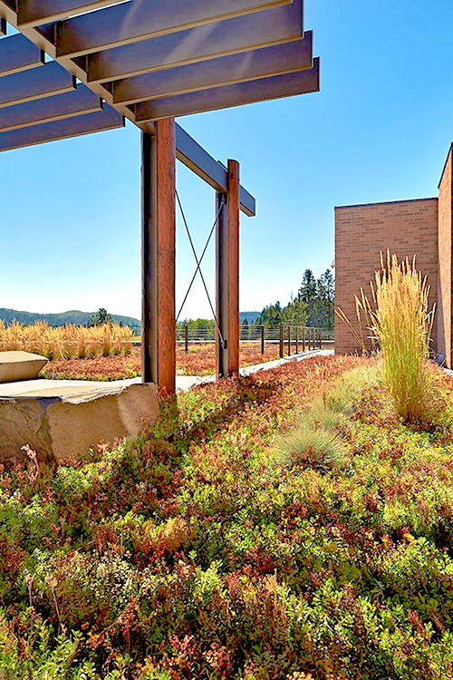 green roof benefits intermountain roofscapes. Black Bedroom Furniture Sets. Home Design Ideas